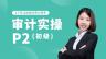 审计实操30讲(P2)初级系统班(送教材)